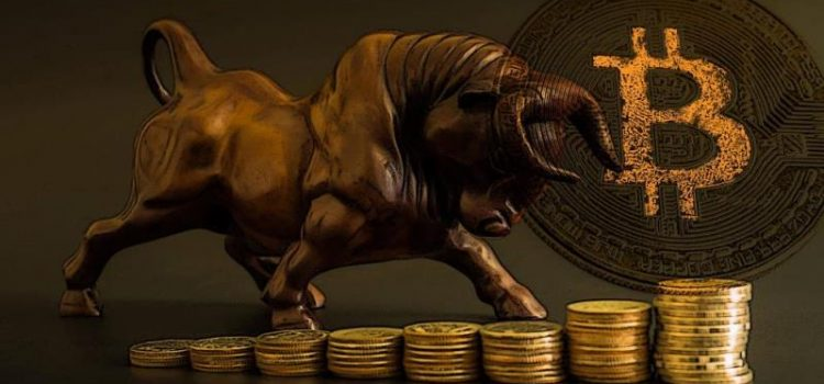 "The Main Reason Why This Crypto Bull Run ""Hits Different"""