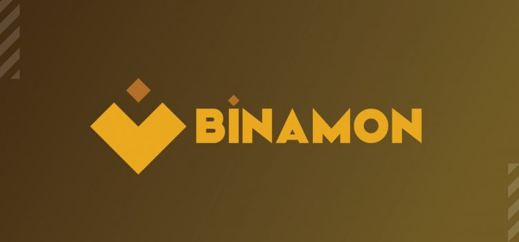 Welcome to Binamon: A Gaming Universe of NFT Digital Monsters on BSC